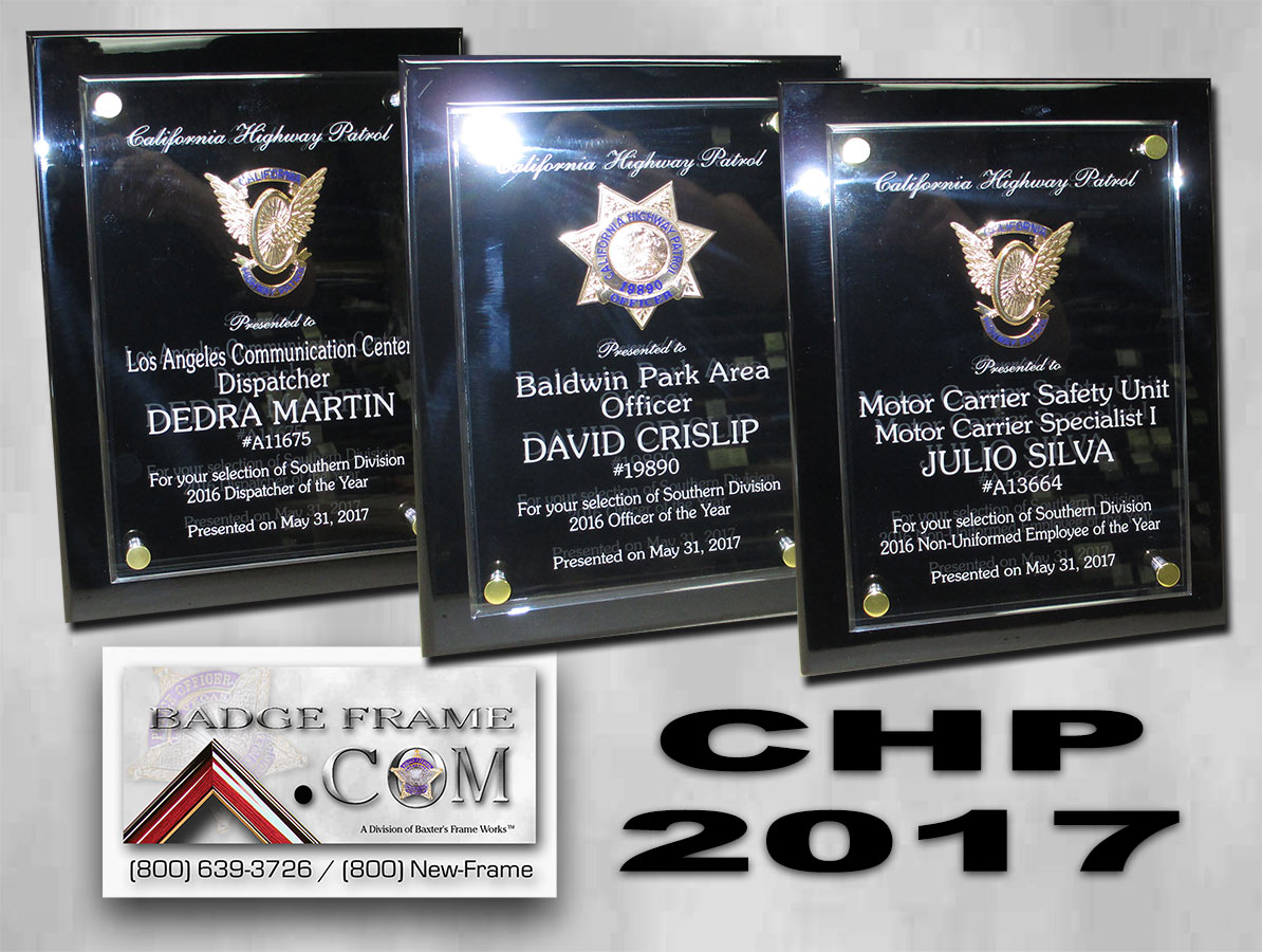 CHP 2017           Awards from Badge Frame