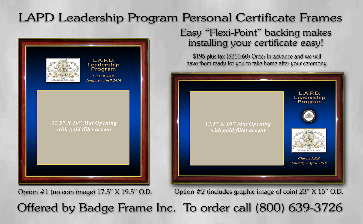 Programs Leadership And Inclusion Certificate 3784830