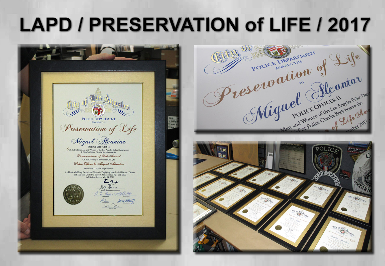 LAPD - Preservation of Life Awards from Badge Frame 2017
