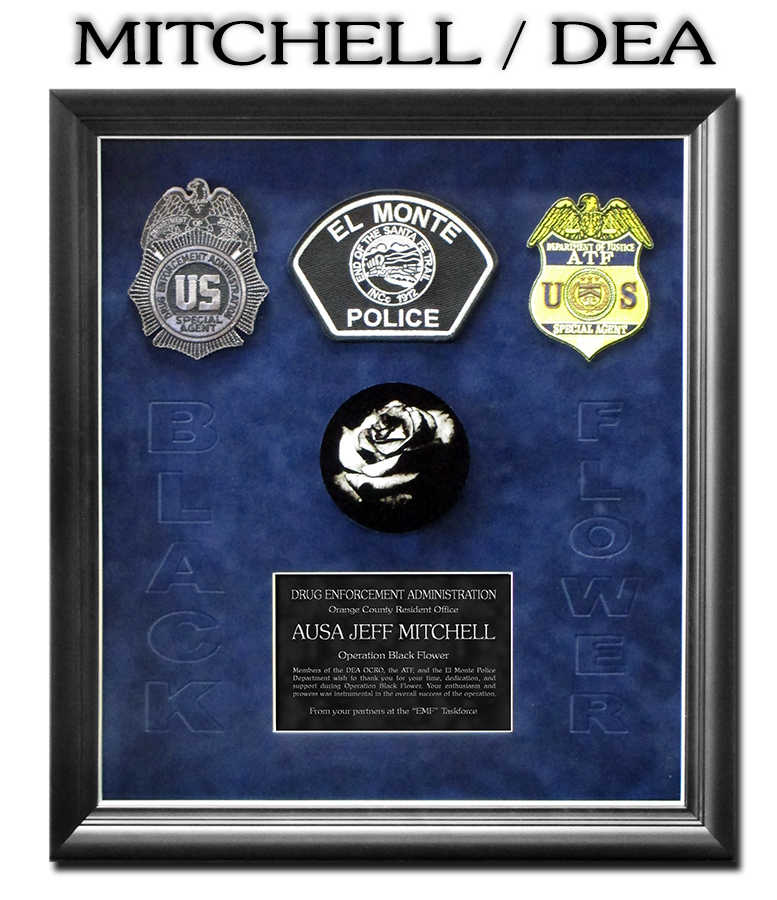 Mitchell - DEA Presentation from Badge Frame