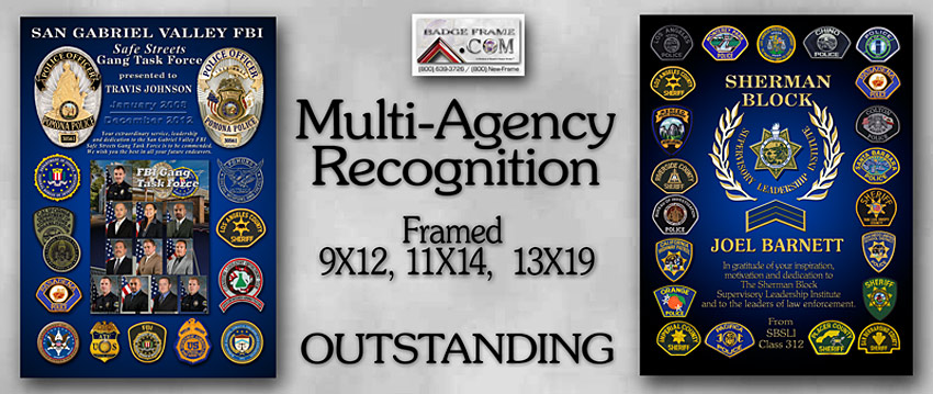 Multi-Agency               Recognition plauqe