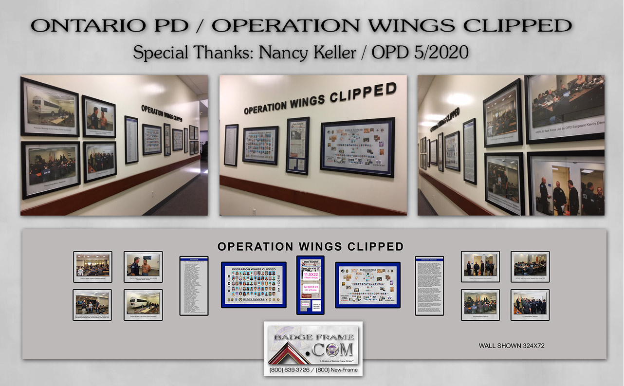 operation-wings-clipped.jpg