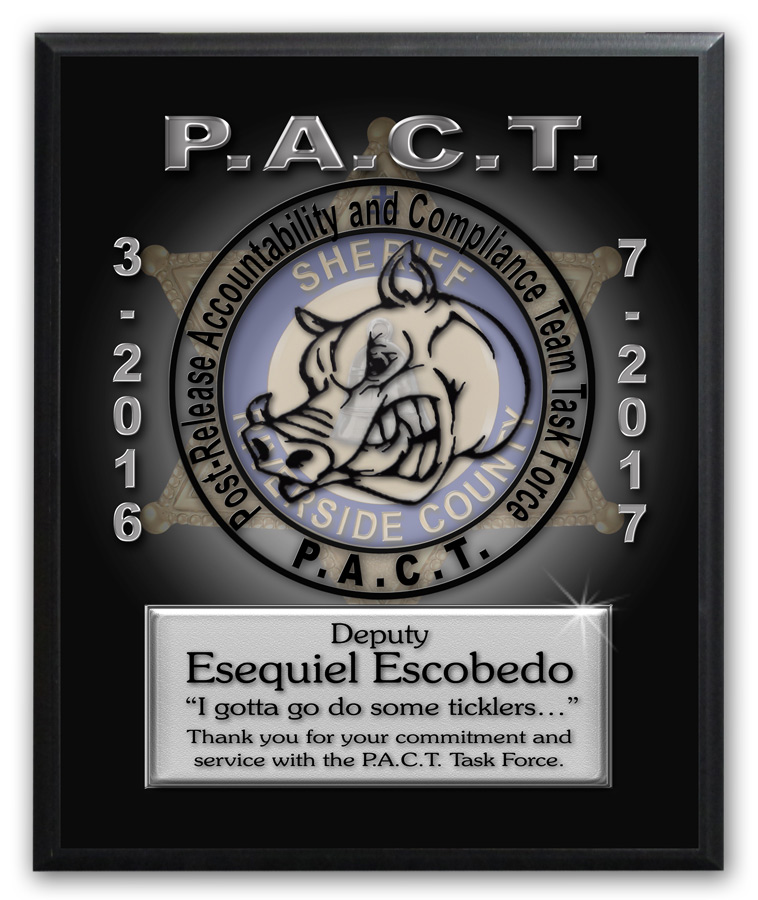 P.A.C.T. Recognition from Badger Frame