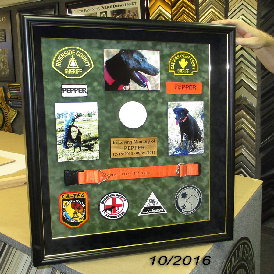 Pepper - K9 Search Dog           Presentation from Badge Frame