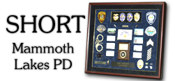 Short - Mammoth Lakes PD