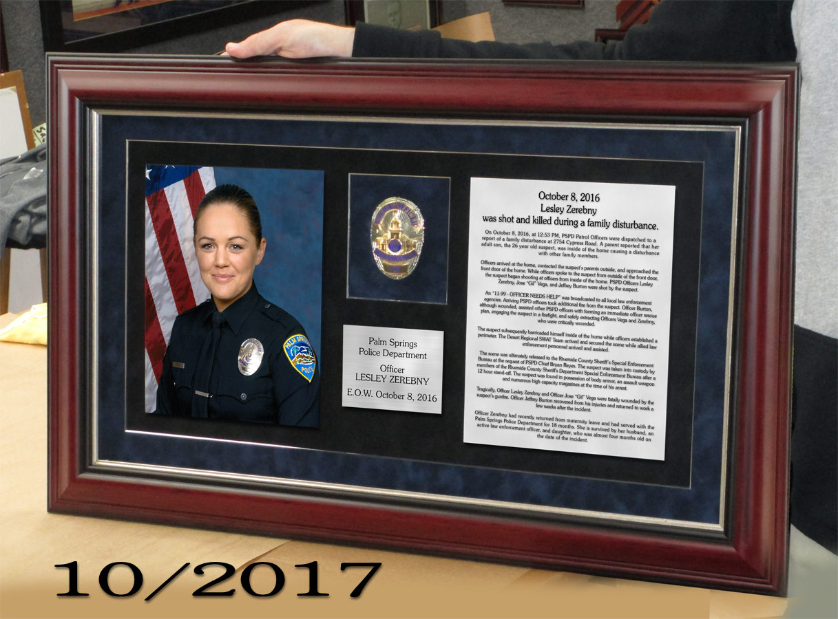 PSPD / E.O.W. / Zerebny presentation from Badge Frame 10/2017